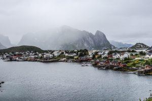 Cod proaspăt din Norvegia